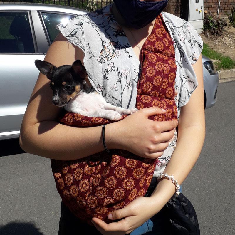 Pet Carry Bag by Sew Elegant